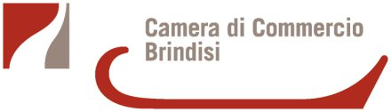 camera commercio